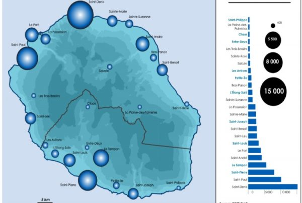 Les dynamiques économiques à la Réunion - 2
